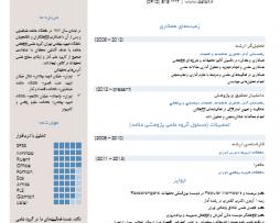رزومه Resume 12