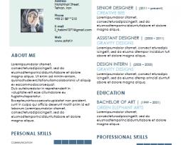 رزومه Resume 4