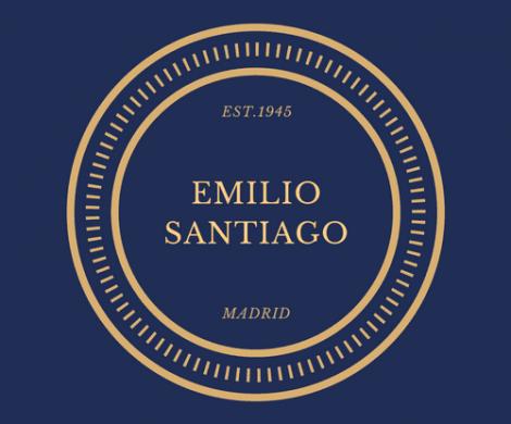 لوگو Logo 29